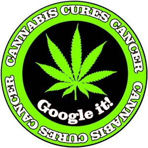 cannabis_cures_cancer_google_it